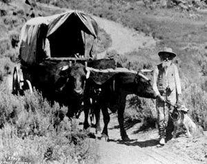 Ezra Meeker helped raise awareness of pioneer days in the Northwest by championing placing monuments along the Oregon Trail.